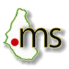 .ms Logo - Monserrat Domain, International Domains